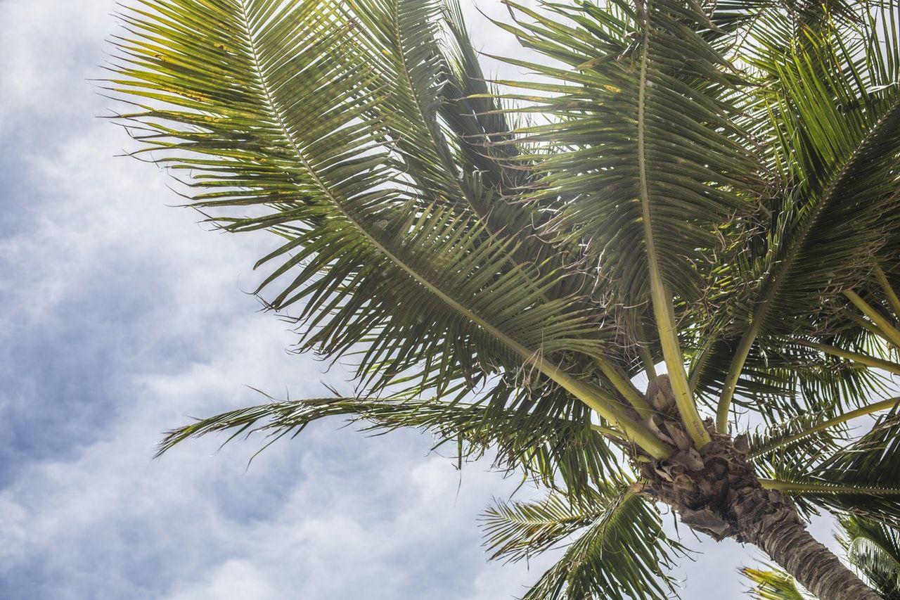 marco island vacation rentals