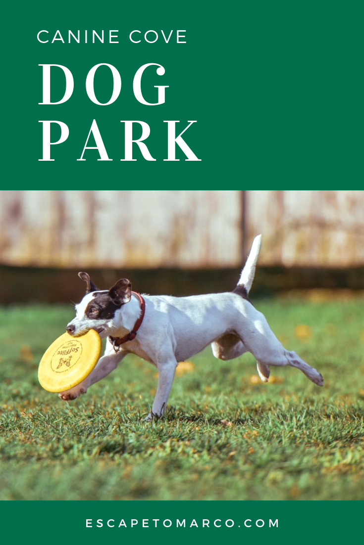 where is canine cove dog park?
