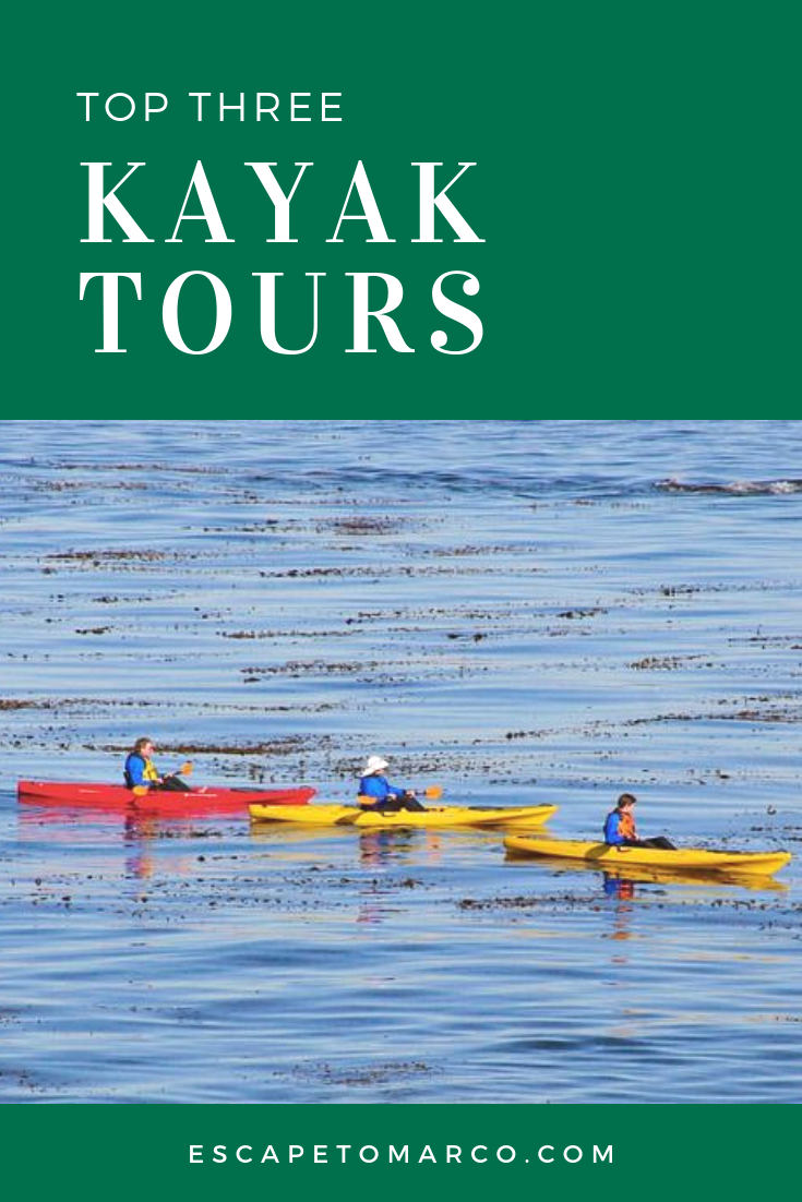 top 3 kayak tour companies in marco island