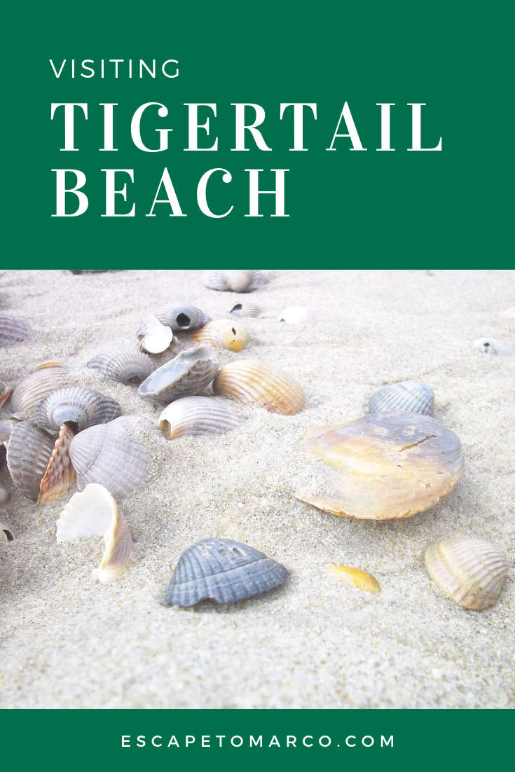 Where is Tigertail Beach?