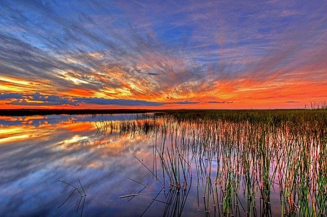 sunset over the water and grass