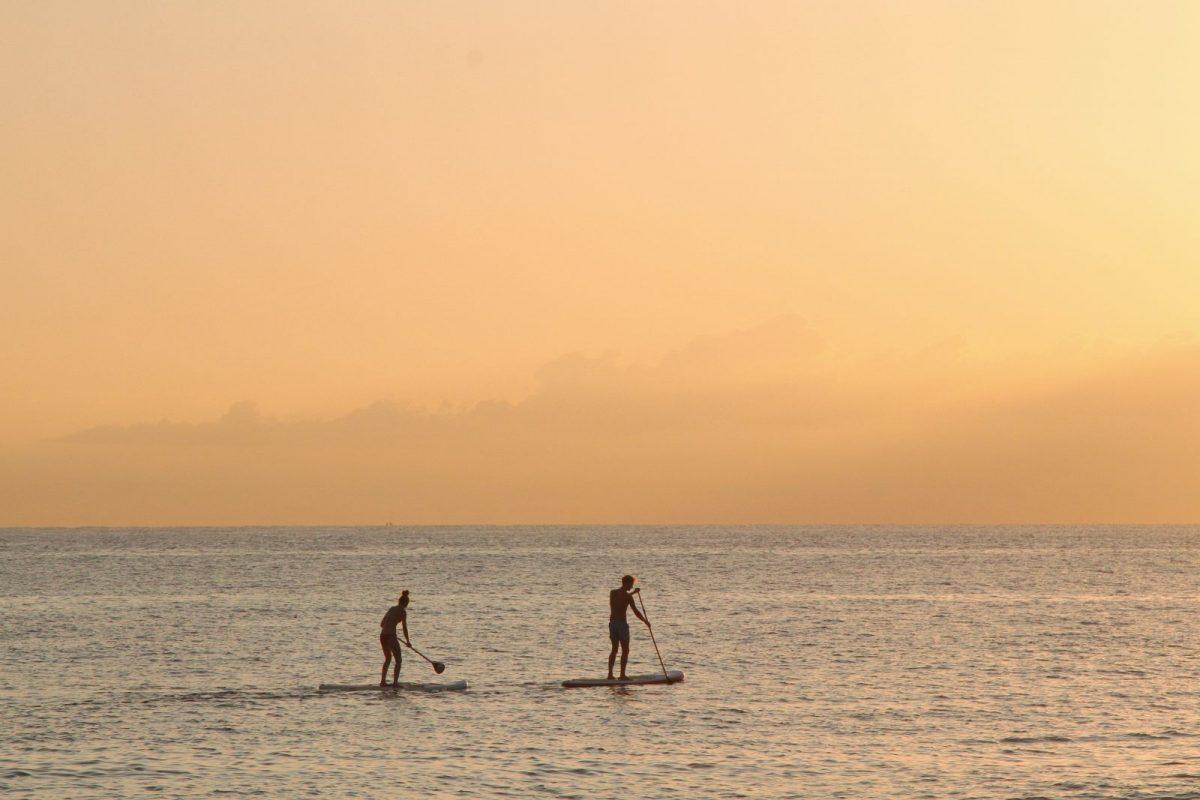 people paddleboarding